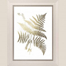 Camelot Gold Foil Ferns I 46cm x 93cm Picture White Wash Frame