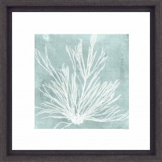 Camelot Seaweed on Aqua IV 33cm x 33cm Picture Black Frame by Vision Studio