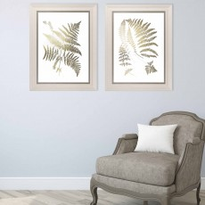 Camelot Gold Foil Ferns II 46cm x 93cm Picture White Wash Frame