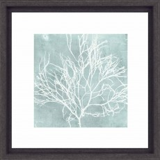 Camelot Seaweed on Aqua II 33cm x 33cm Picture Black Frame by Vision Studio