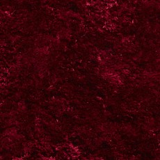 Polar PL95 Rug Ruby