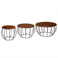 Sage Coffee/Nest Of Tables (3)