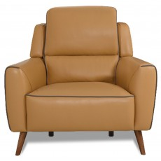 Celeste Armchair Leather Category 20 Honey