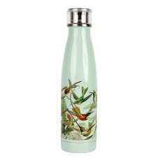 Built V & A 500ml Double Walled Stainless Steel Water Bottle Hummingbird