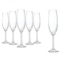Tipperary Crystal Connoissuer Set of 6 Champagne Flutes