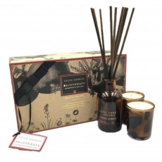 Celtic Candles Organic Rejuvenate Gift Set
