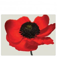 iStyle My Home Poppy Glass Worktop Saver
