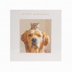 Cat & Dog Happy Birthday Greeting Card