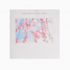 Pink Blossom & Blue Sky Thinking Of You Greeting Card