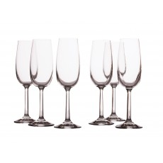 Maxwell & Williams Casa Domani Evolve Set Of 6 Champagne Flutes