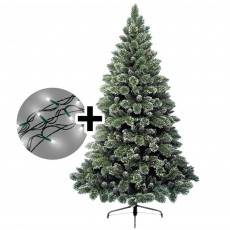 240cm/8ft Frosted Finley Tree & 1000 LED Twinkle Multi Coloured Lights