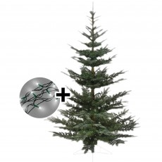 180cm/6ft Nobilis Fir Tree & 360 LED Twinkle Multi Coloured Lights