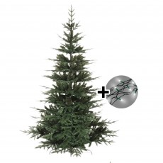 180cm/6ft Greenwich Fir Tree & 360 LED Twinkle Multi Coloured Lights