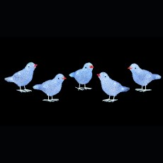 Acrylic LED Birds 5 Piece Lights White 16cm