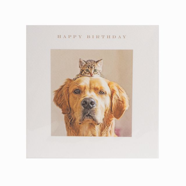 Art From Cat Dog Happy Birthday Greeting Card